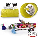 Best Kitten Toys - RIO Direct Cat Toys Kitten Toys Variety Pack Review