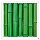 wallapp bamboo green, Bambusstangen, Bambus grün lackiert, Wanddekoration, 3D Bild zum Sehen und Fühlen