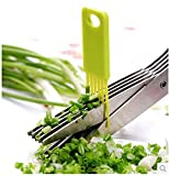 Hk Villa 5 Blade Vegetable Scissors with Cleaning Comb/Ideal for Cut Herb Spices