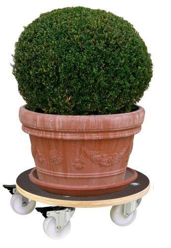 """WAGNER Pflanzenroller / Transporthilfe \""""MAXIGRIP\"""" - Filmsiebdruckplatte Birke, FSC, braun, Durchmesser 38 x 11 cm, 2 Feststeller, Tragkraft 250 kg - 20110701"""