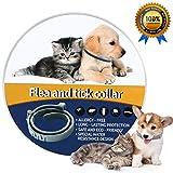 NINGBO CHANSON Collare Antipulci per Cane e Gatto, 60cm Collare Antiparassitario Antizecche Regolabile, Design Impermeabile e 8 Mesi di Prevenzione Continua