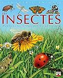 Les Insectes - Pour les faire connaître aux enfants