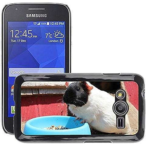 GoGoMobile stile PC Custodia Cover rigida a caldo // M00117703 cavie topo criceto topo // Samsung Galaxy ACE4/Galaxy Ace 4 LTE/SM-G313F