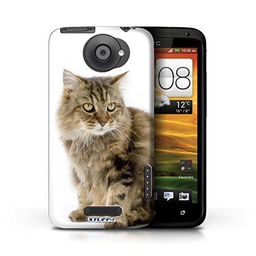 Kobalt® Imprimé Etui / Coque pour HTC One X / Scottish Fold conception / Série Espèces de chats Gueux