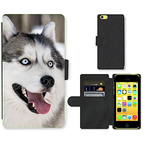 Folio Schutzhülle // V00003461 Husky-Hund Winter // Apple iPhone 5C (Iphone 5c Wallet Case Husky)