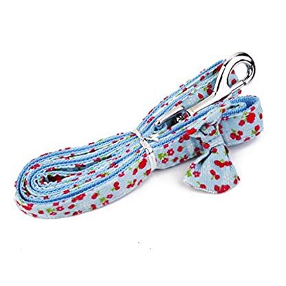 Floral Pattern Tiny Small Dog Harness Leash Lead Walking Chest Strap (S, Blue) 6