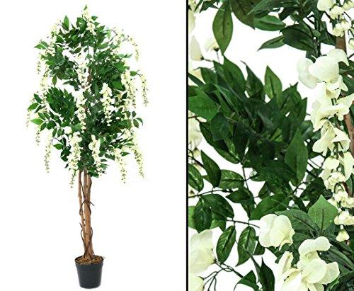 Künstlicher Goldregenbaum mit weißen Blüten 150cm, im Zementtopf – Kunstpflanze Kunstbaum künstliche Bäume Kunstbäume Gummibaum Kunstoffpflanzen Dekopflanzen Textilpflanzen