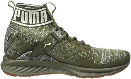 Puma Ignite Evoknit Hypernature, Chaussures Multisport Outdoor Homme Vert (Olive Night-birch- White)