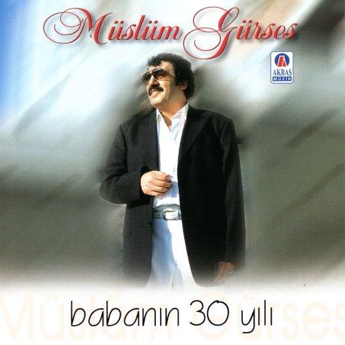 babanin-30-yili