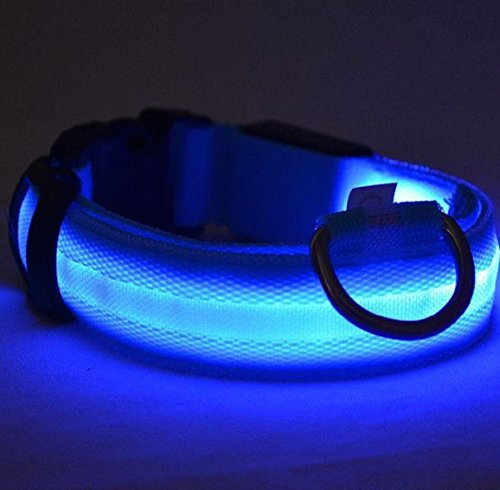 UK-SELLER-Improved-Dog-Visibility-Safety-USB-Rechargeable-LED-Dog-Safety-Collar-In-Size-L-Ultra-Bright-LEDs-Connects-to-Devices-No-Batteries-Great-Fun-Your-Dog-will-be-more-Visible-Safe-Blue-Large-SIZ