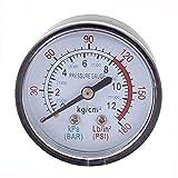 Newin Star DIY Profesional vendedora caliente del compresor neumático hidráulico de presión de fluido 0-180PSI Gauge