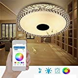 48W RGB Smart Dimmable Led Ceiling Light Bluetooth Speaker App Control Lamp Ac110-260V