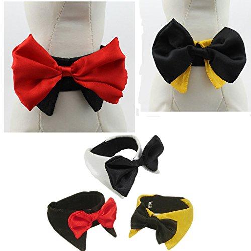 Art Und Weise Liebenswert Haustier Hund Katze Krawatte Kragen – Gelb, XL - 5