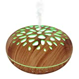 Best Amazon Aromatherapy Diffusers - DIKLA 400ML Smart Essential Oil Diffuser Cool Mist Review