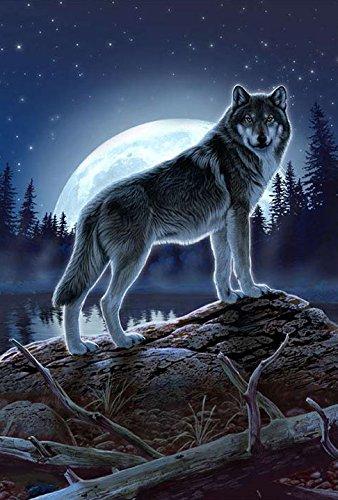 Toland Home Garden Full Moon Wolf Deko Wilderness/im Freien House Yard Flagge, 71,1cm von 101,6cm (Winter-outdoor-flags Große)