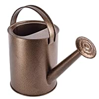 Truphe Garden Plant Watering Can (Metallic 5 Litre)