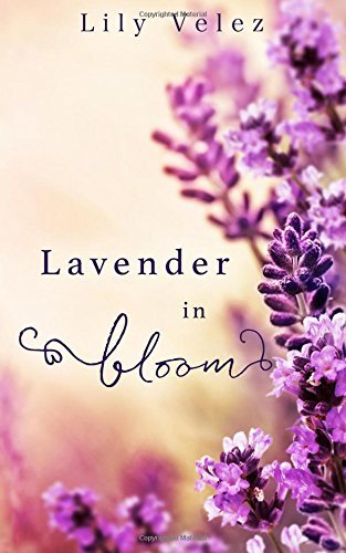 lavender-in-bloom-by-lily-velez-2016-07-21