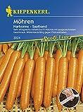 Kiepenkerl Möhren 'Narbonne', F1 | ausgezeichneter Geschmack | mittelfrüh | 5 m Saatband