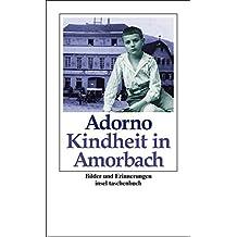 Kindheit in Amorbach: Bilder und Erinnerungen (insel taschenbuch)