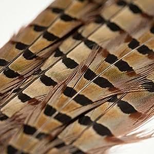 Lot de 6 plumes de faisan naturelles 50cm de long - Rosemarie Schulz