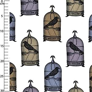 Tissu Nevermore - Jackdaws Multi x10cm