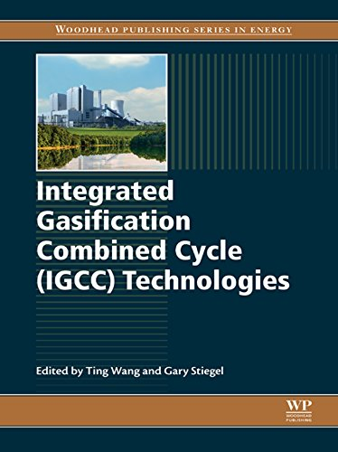 Integrated Gasification Combined Cycle (IGCC) Technologies (English Edition) - Ash Media Storage