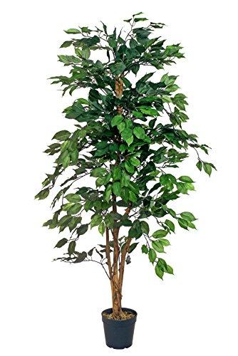 McPalms Ficus Kunstbaum grün 1,65 m Kunstpflanze