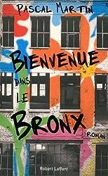 Bienvenue dans le Bronx