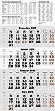 rido/idé 7033420 Wandkalender/Vier-Monats-Kalender quattroplan 2, 1 Blatt = 4 Monate, 330 x 635 mm, Kalendarium 2018