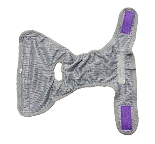 Septven Weiblich Hunde Schutzhose Haustier Unterhose Unterwäsche Welpenhose Hose Windel Hygieneunterhose Komfortabel, Atmungsaktiv (M, Lila) -
