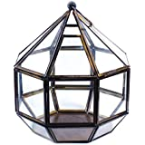The Esthetic Label Iron And Glass Prism T-Light Holder (17.5 Cm X 15.5 Cm X 19 Cm, Clear And Black)