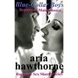 Blue-Collar Boys - Repairs & Maintenance: Romance Sex Short Stories (English Edition)