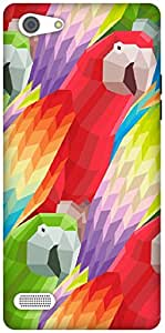 The Racoon Grip Parrots hard plastic printed back case / cover for Oppo A33