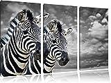 deux zèbres noir / blanc sur l'image 120x80 sur toile 3-pièces de l'image de la toile, énorme XXL Photos complètement encadrées avec civière, art impression sur murale avec cadre, gänstiger comme la peinture ou la peinture à l'huile, aucune affiche ou un poster