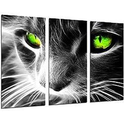 Cuadro Moderno Fotografico Gato Ojos de Colores, Animales, 97 x 62 cm, ref. 26517