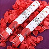 Spa Veda Big Rose Popper 12 Inch Birthday Party Decoration - Set of 2