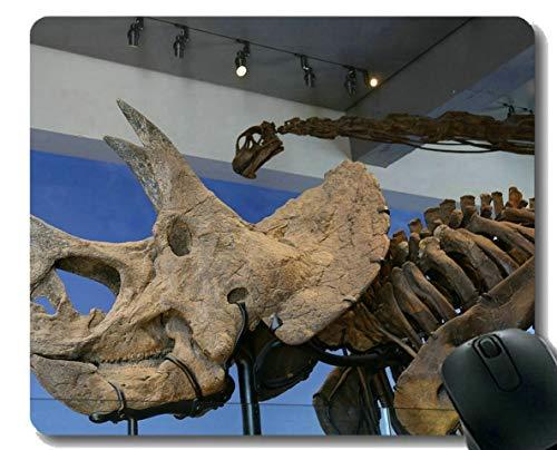 Mausunterlage mit Sperrkante, Dinosaurier-Fossil-Museum-personalisierte Rechteck-Spiel-Mausunterlagen
