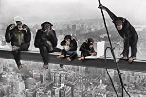 Grande affiche plastifiée Monkey Business Lunchtime Singe Poster Dimensions 91.5 x 61cm (environ)