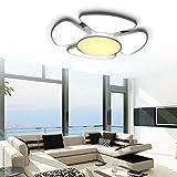 60W LED Deckenleuchte Doppelte Farbe Moderne Deckenlampe Energiesparende Wohnzimmerlampe Esszimmer Deckenbeleuchtung Schlafzimmer geeignet [Energieklasse A++]