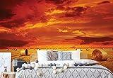 Wallsticker Warehouse Gold Landschaft Feld Natur Vlies Fototapete Fotomural - Wandbild - Tapete - 211cm x 91cm / 1 Teilig - Gedrückt auf 130gsm Vlies - 414VET - Wiesen & Landschaft