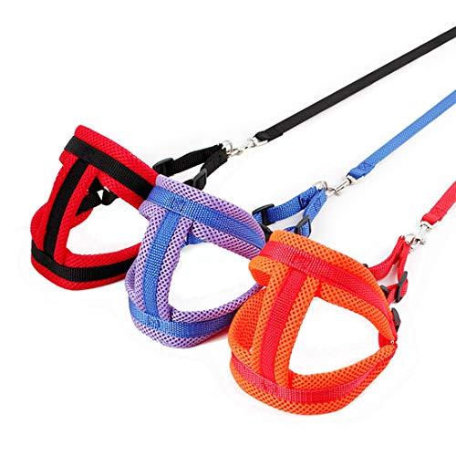 Brustgurt, Mesh-Kasten-Rückseiten, Haustier-Leine, Hunde Fixed Strap, Haustier Auto-Sicherheitsgurt, Multifunktionslaufhundeleine, for kleine und mittlere Hunde zu Fuß Trainingshalsbänder -