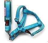 DAN Großes Hundetraktionsseil, reflektierender Brustgurt, Hundekette, Haustierzubehör, days blue, size 2.5 (chest adjustment range 65-98cm)