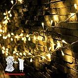 LED Lichterkette, von myCozyLite®, 200 LED Deko Lichterketten in 20 Metern Lang, Warmweiß, Wasserdicht für Innen und Außen