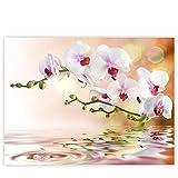 Leinwandbild 100x75 cm PREMIUM Leinwand Bild - Wandbild Kunstdruck Wanddeko Wand Canvas - Blumen Orchidee Natur - no. 200