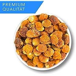 Physalis - Stachelbeeren - Unbehandelte Qualität - 1001 Frucht -Premium Qualität - EXCLUSIVE - Nüsse – Trockenfrüchte – Gewürze -1kg