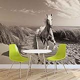 Weißer Pferd Strand Grau- Forwall - Fototapete - Tapete - Fotomural - Mural Wandbild - (3136WM) - XL - 208cm x 146cm - VLIES (EasyInstall) - 2 Pieces