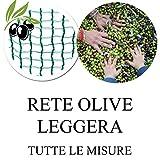 Rete raccolta Olive Leggera 40gr/mq telo resistente e maneggevole 4x4 m