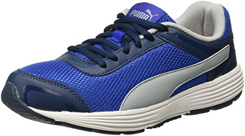 Puma Men's Ceres IDP True Blue-Quarry Running Shoes - 11 UK/India (46...
