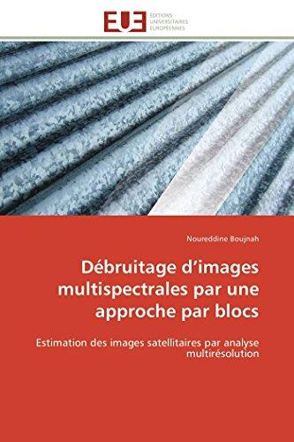 Débruitage d images multispectrales par une approche par blocs par Noureddine Boujnah