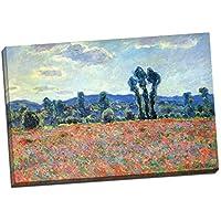 Stampa su tela, grande 76,20 x 50,80 cm, motivo: Campo di papaveri presso Giverny di Claude Monet